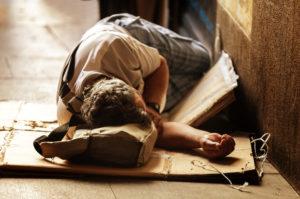 приют для бездомных